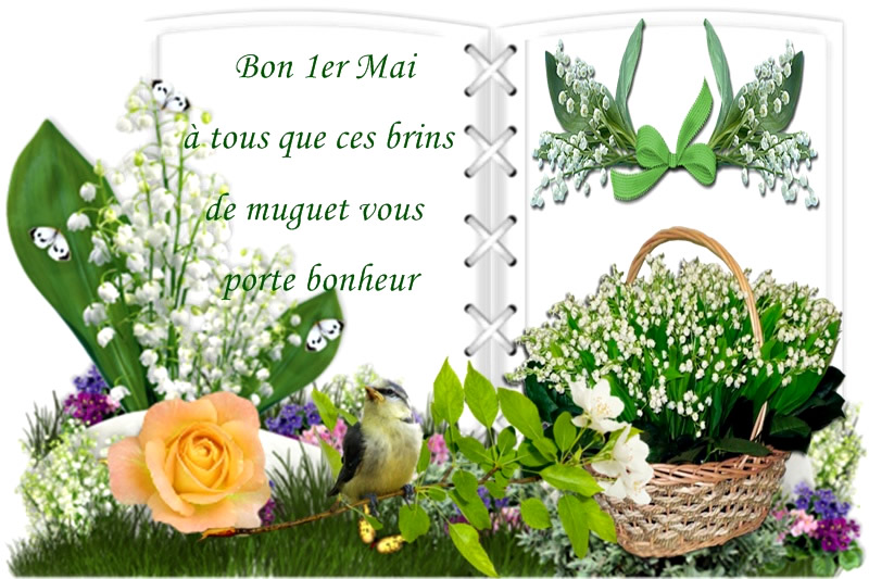 26 Images Et Photos Avec Tag Muguet Bonnesimages