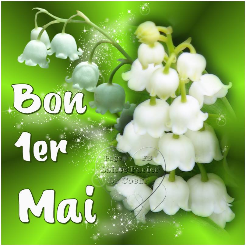25 Images et photos avec tag Muguet - BonnesImages