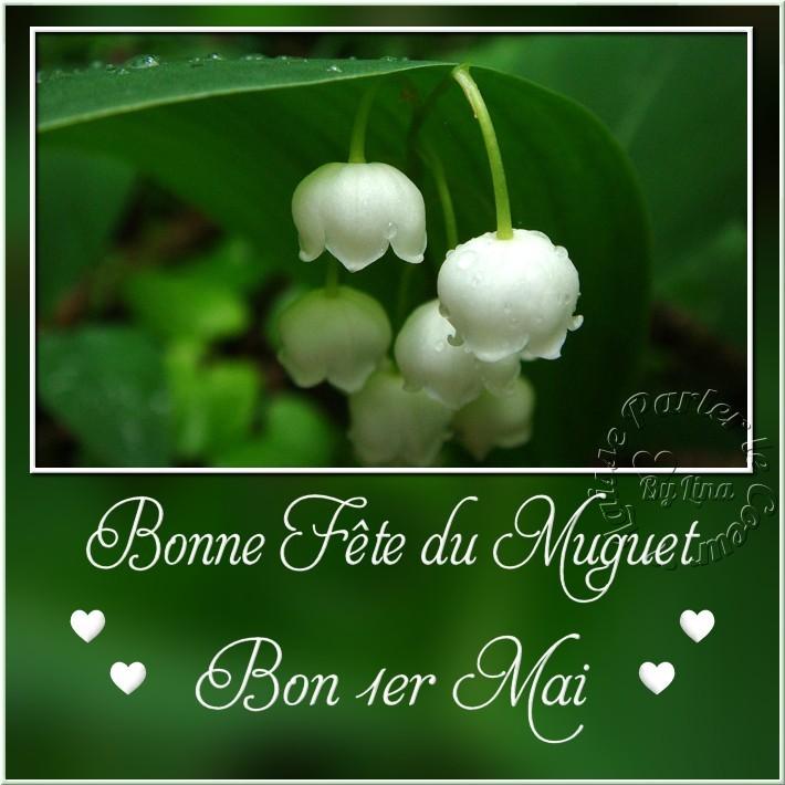Bonne Fête du Muguet Bon 1er Mai