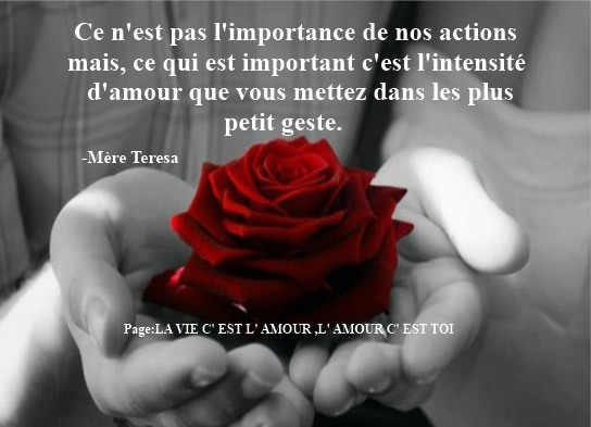 Amour image 11