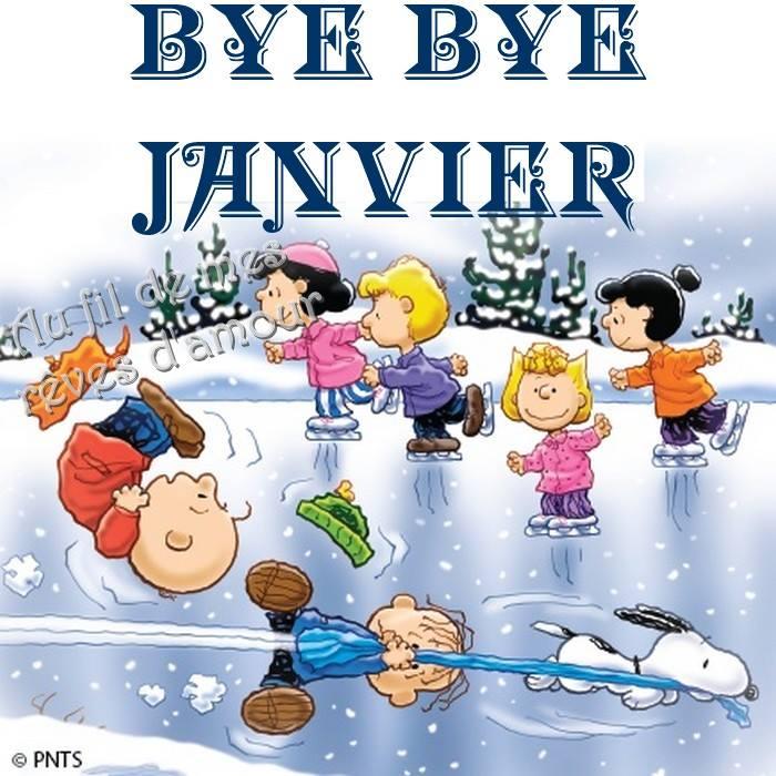 Bye Bye Janvier