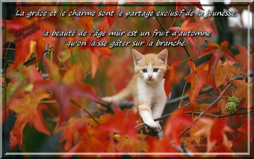 Le grâce et la charme sont le partage...