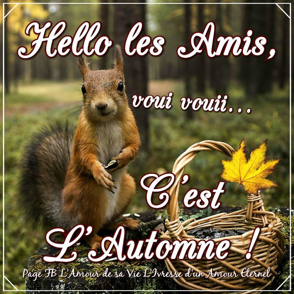 Hello les Amis, voui voui... C'est L'Automne !