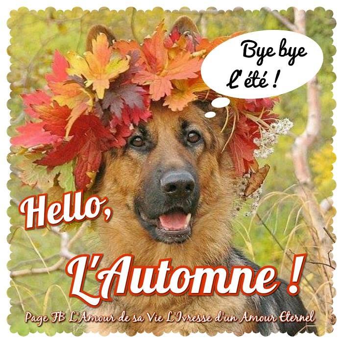 Bye bye l'été ! Hello, L'Automne !
