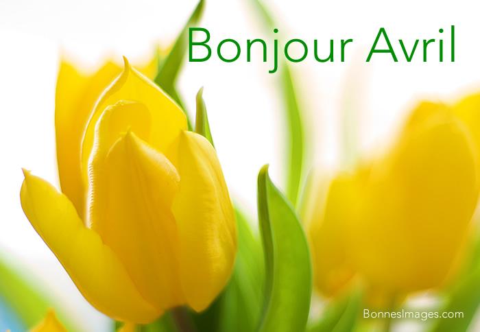 Bonjour Avril image 2