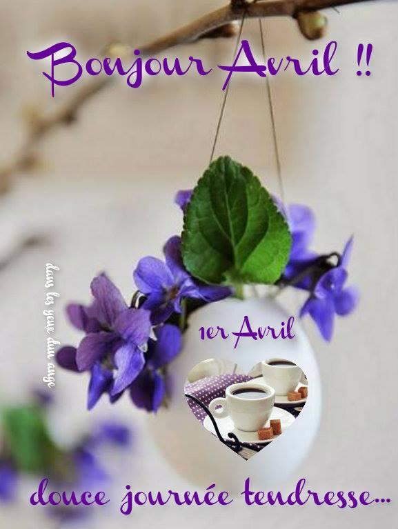 Bonjour Avril !!
