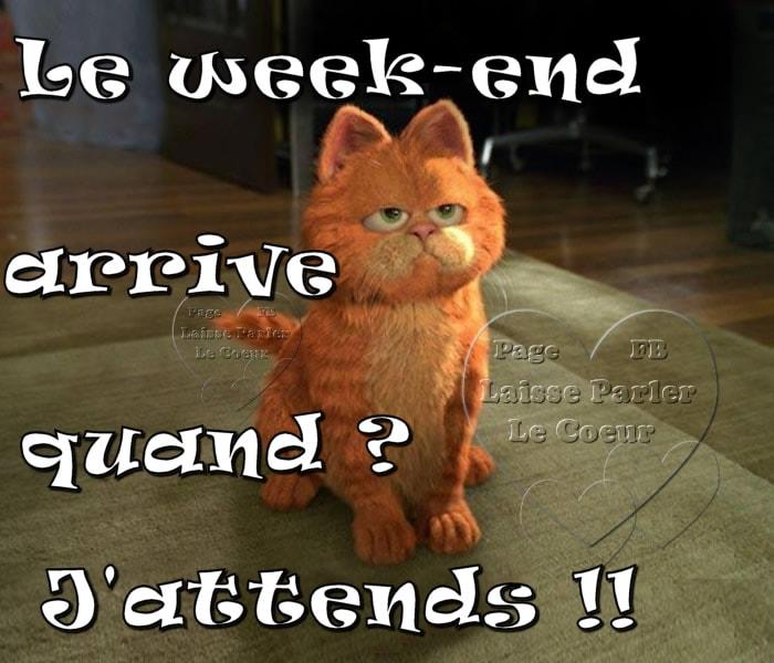 Bientôt le week-end 5