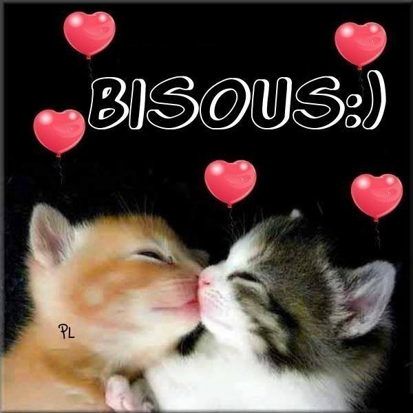 Bisous <img src=
