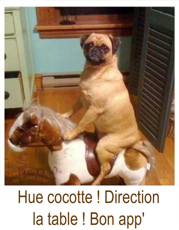 Hue cocotte ! Direction la table ! Bon...