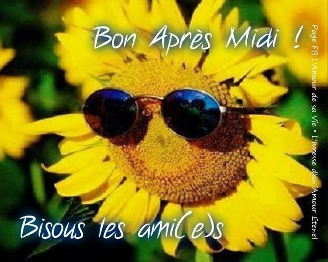 Bon Après Midi! Bisous les ami(e)s