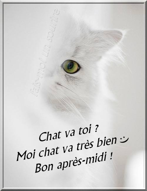 Chat va toi ? Moi chat va très bien :)...