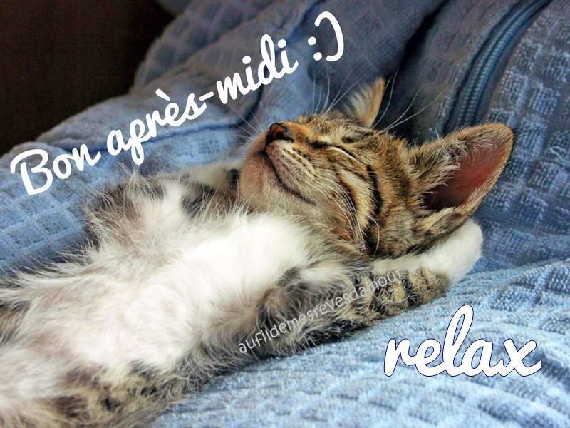 Bon après-midi :) Relax