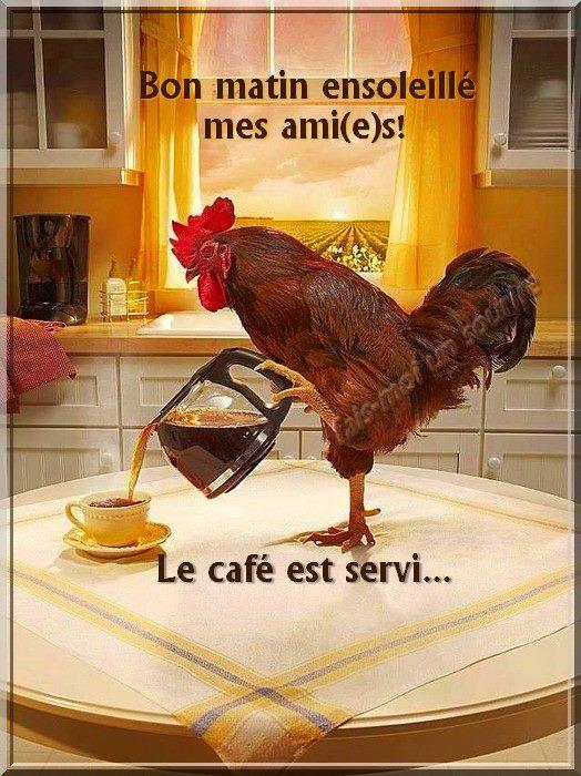 Bon matin ensoleillé mes ami(e)s! Le café est servi...