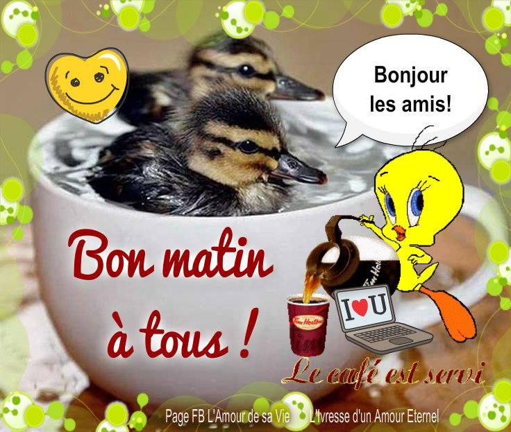 Bon matin à tous ! Bonjour les amis !