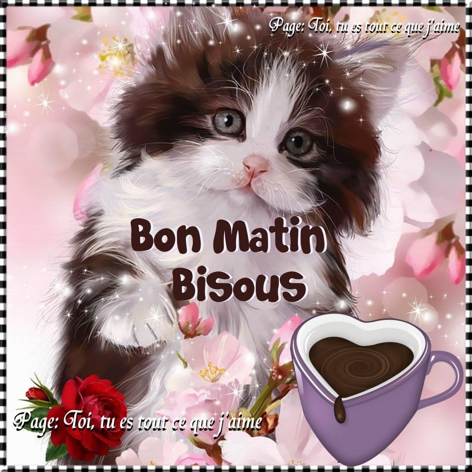 Bon Matin, Bisous