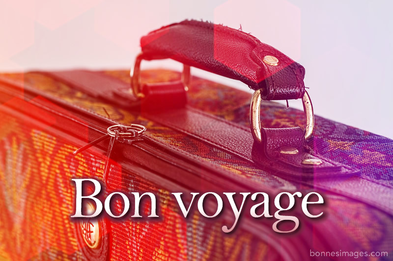 Bon Voyage image 2