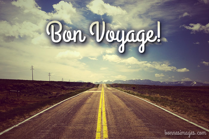 Bon Voyage image 3