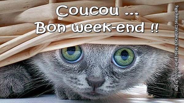 Coucou... Bon week-end !