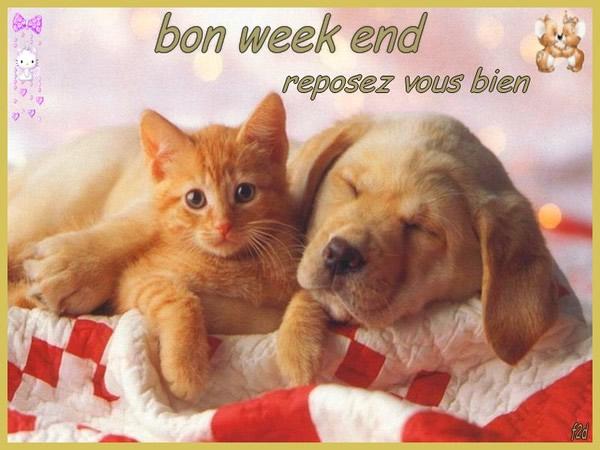 Bon week end, reposez vous bien