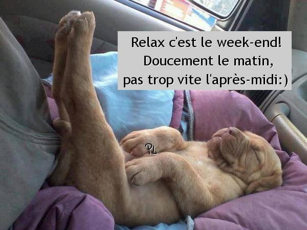 Relax, c'est le week-end! Doucement le...