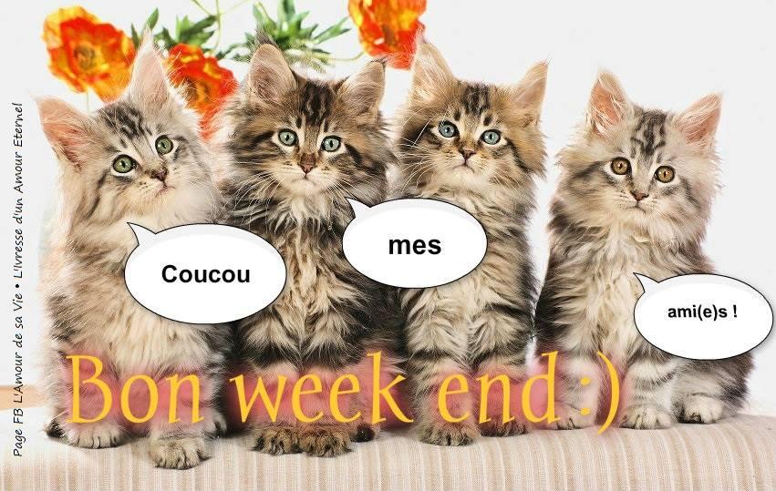 Coucou mes ami(e)s! Bon week end :)