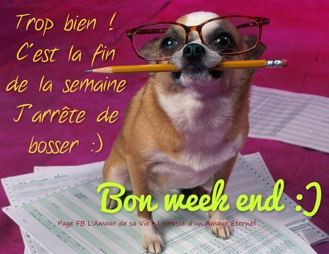 Trop bien! C'est la fin de la semaine. J'arrête de bosser :) Bon week end :)