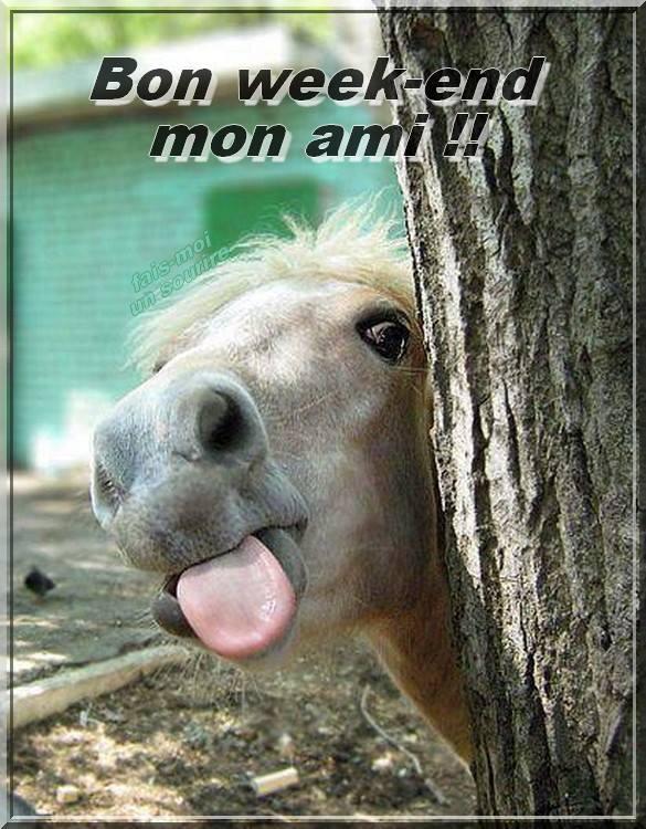 Bon week-end mon ami !!