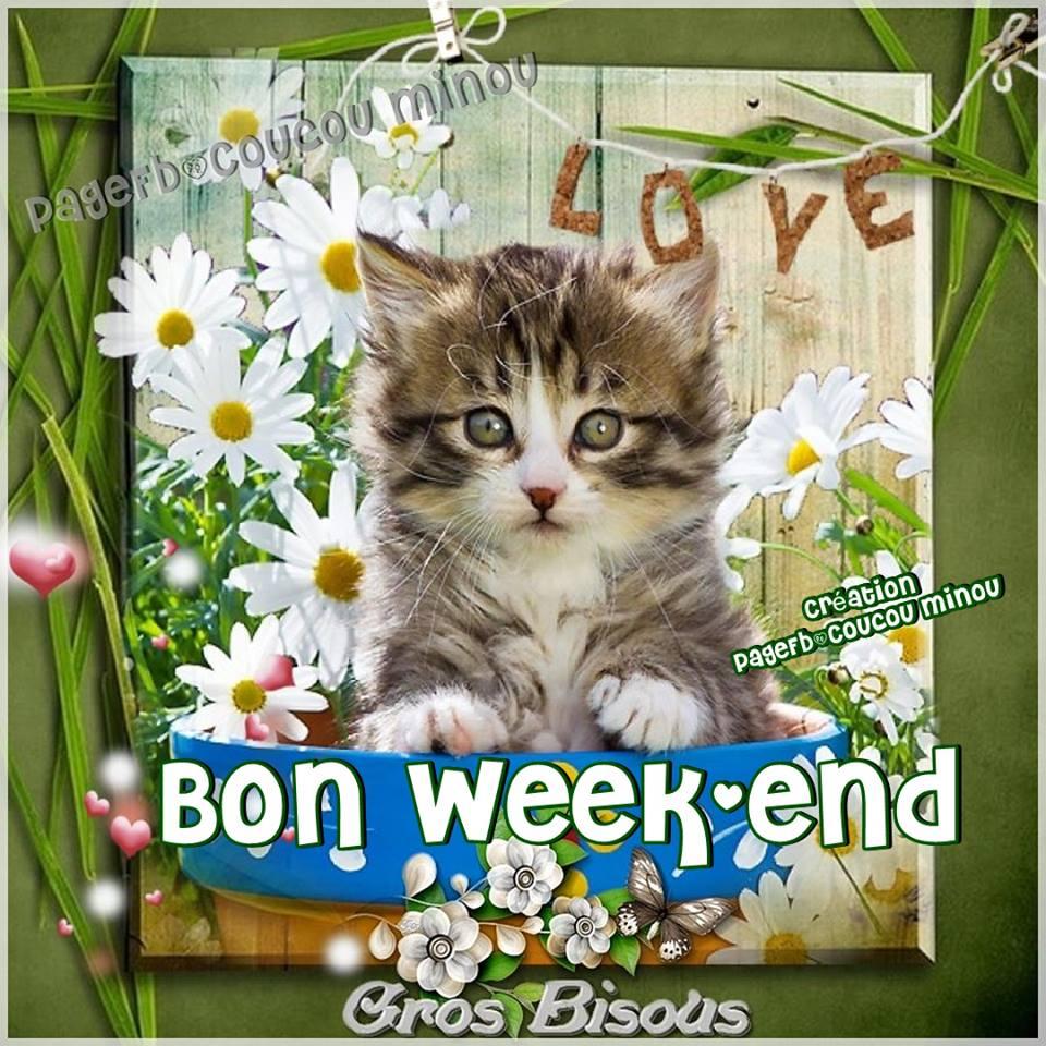Bon week-end, gros bisous