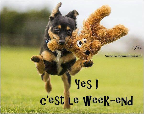 Yes ! C'est le week-end