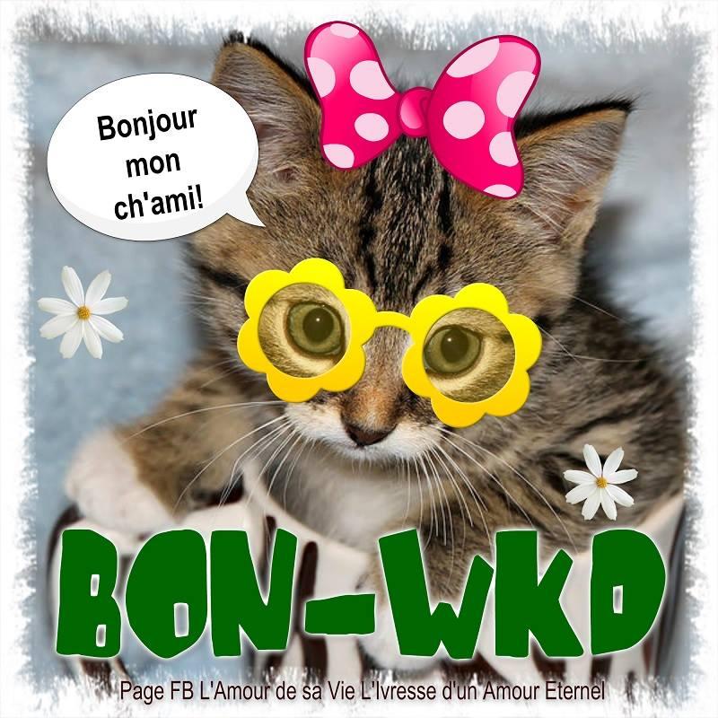 Bonjour mon ch'ami ! Bon-Wkd