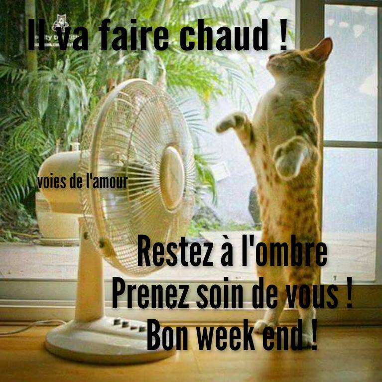 Il va faire chaud ! Bon week end !