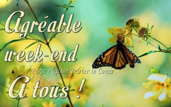 Agréable week-end à tous !