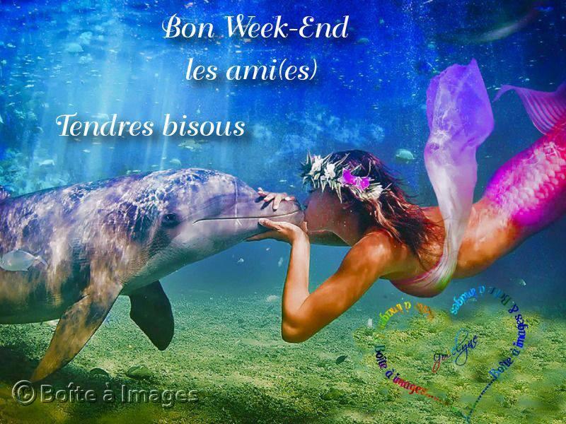 Bon Week-End les ami(e)s. Tendres bisous