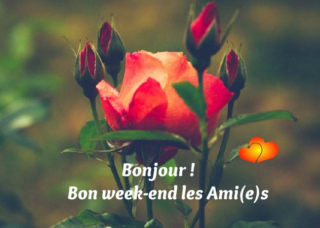 Bon week-end image 4