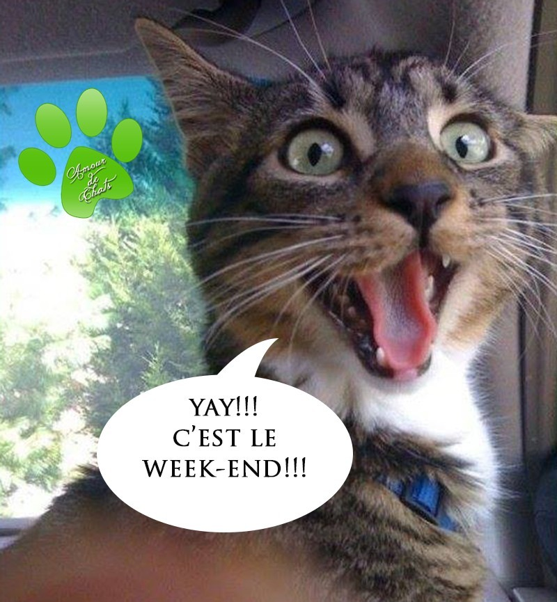Yay!!! C'est le week-end!!!