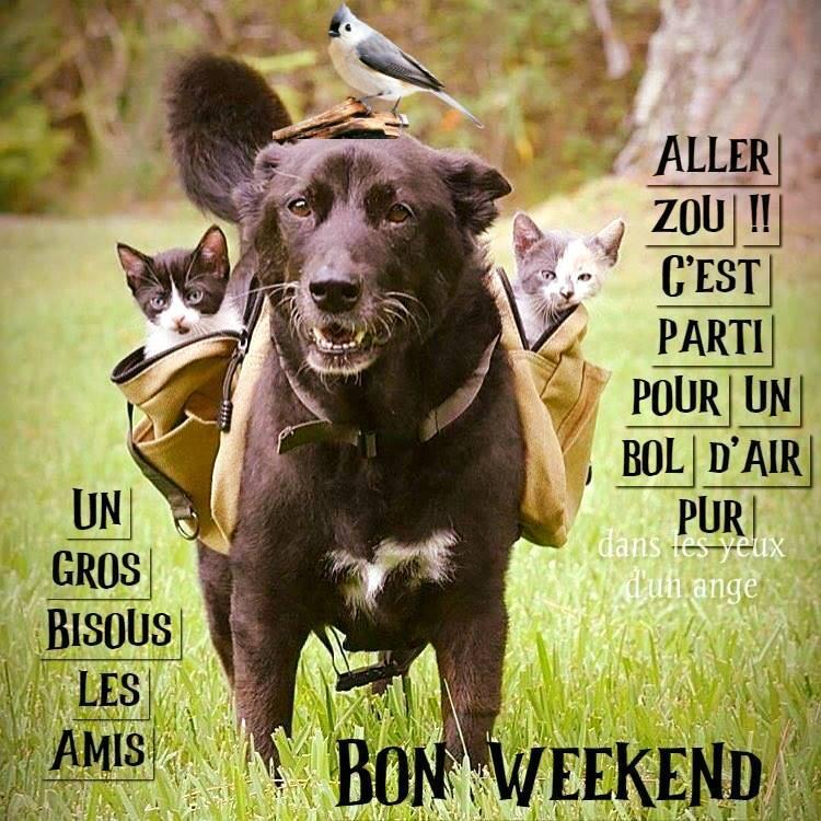 Á… 143 Bon Week End Images Photos Et Illustrations Pour Facebook Bonnesimages