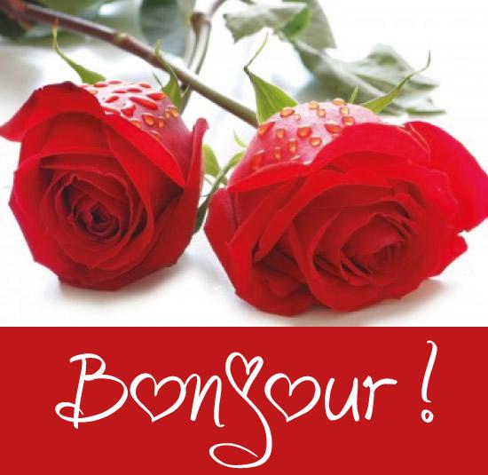 bonjour_036