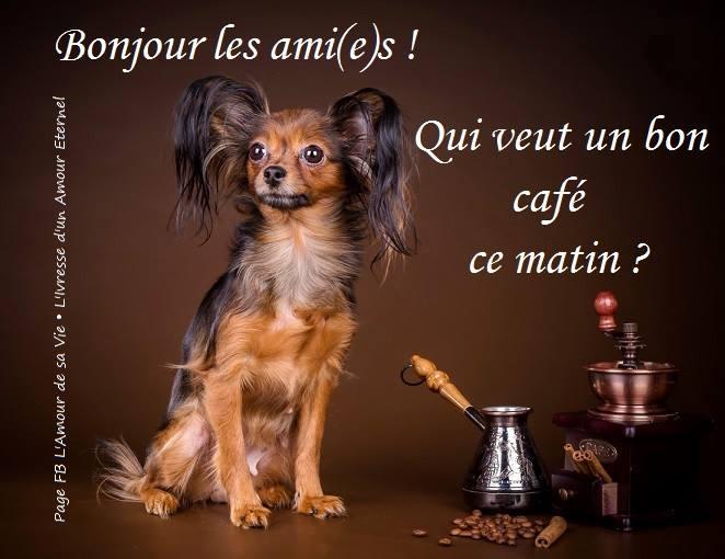 Bonjour les ami(e)s! Qui veut un bon café ce matin?