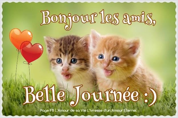 Bonjour les amis, Belle Journée :)