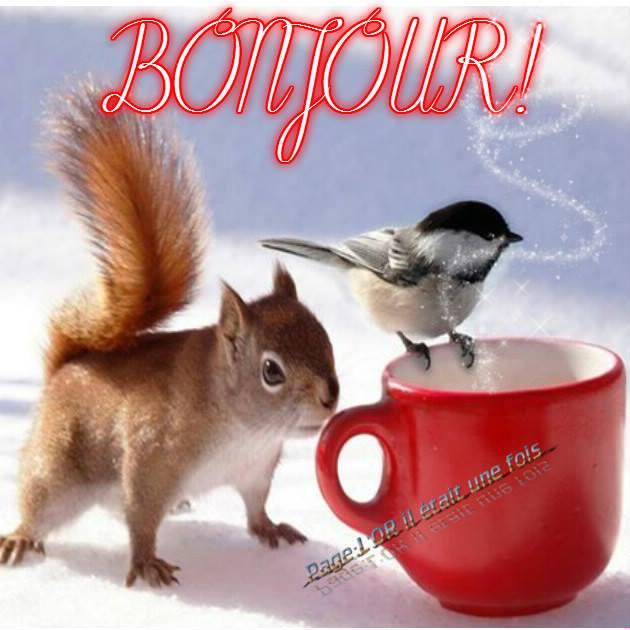 Bonjour image 2