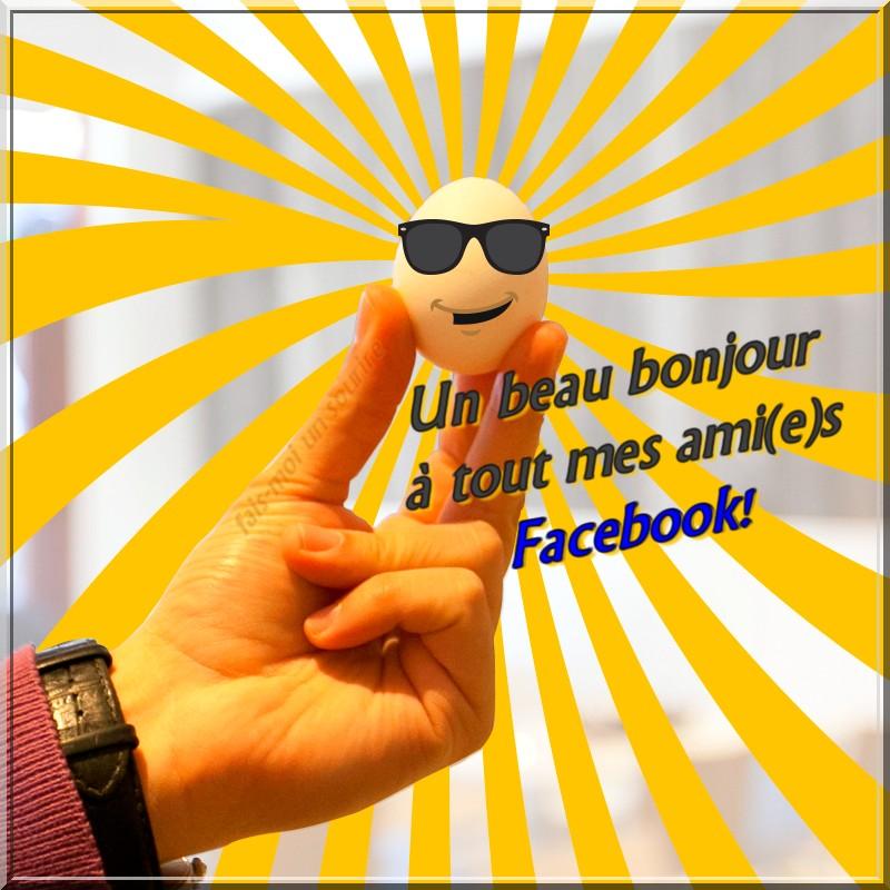 Favori Un beau bonjour à tout mes ami(e)s Facebook! image #6732  CU35