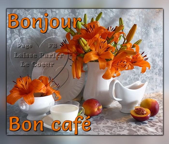 Bonjour image 7
