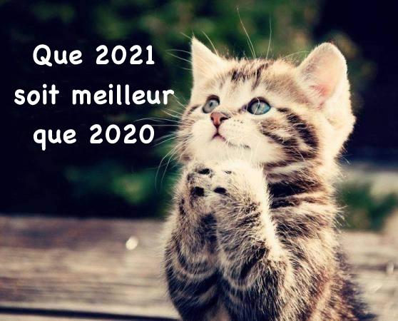 Bonne et heureuse année 2021 Bonne-annee_009e