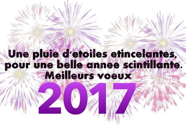 Je vous souhaite une Merveilleuse Année 2017