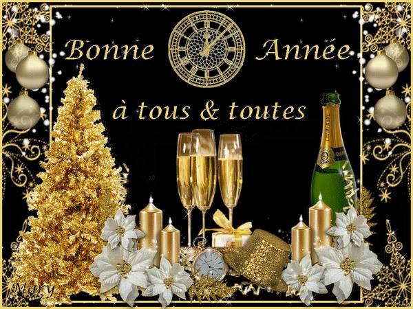 Bonne Année à tous & toutes