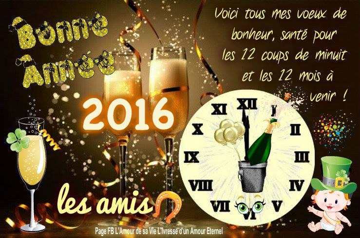 Bonne Année 2016 les amis