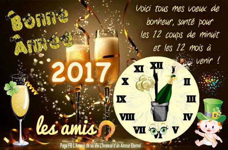 Bon réveillon et bonne année 2017 Bonne-annee_036a