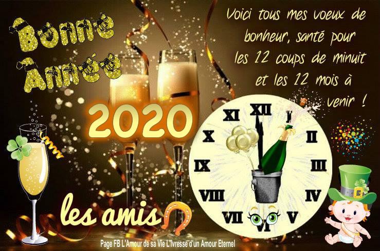 Bonne Année 2020 les amis