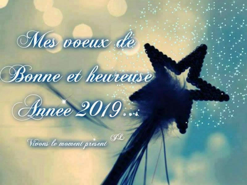Mes voeux de Bonne et heureuse Année 2019