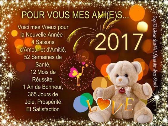 Bonne fin d'année et bonne nouvelle 2017 Bonne-annee_042a